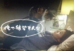 オトナ女子中原亜紀(篠原涼子)飼い猫ちくわちゃん5話ベッドでキス俺で練習すんな