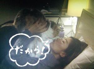 オトナ女子中原亜紀(篠原涼子)飼い猫ちくわちゃん5話だから、いい加減にしてにゃ