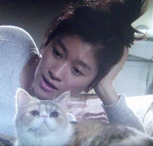 ドラマオトナ女子9話の、猫の中原ちくわちゃん3
