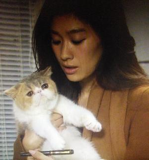 オトナ女子9話中原亜紀(篠原涼子)に抱っこされるちくわちゃん1