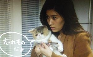 オトナ女子9話中原亜紀(篠原涼子)の猫ちくわちゃん抱っこされ「忘れ物だよ」とつぶやく