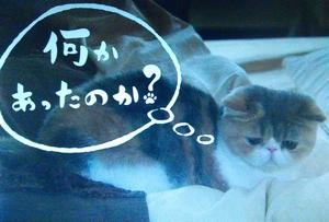 オトナ女子10話、最終回、亜紀の様子がおかしくて、「何かあったのか?」