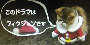 オトナ女子10話、最終回、猫のちくわちゃん最後の言葉「このドラマはフィクションです」
