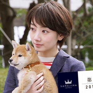 世界一難しい恋(セカムズ)2話にて鮫島ホテルズ社長の鮫島零治(大野智)が、道で見つけた捨て犬(わんちゃん)1