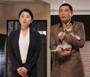 世界一難しい恋(セカムズ)2話にて鮫島ホテルズ社長の鮫島零治(大野智)が、道で見つけた捨て犬(わんちゃん)2