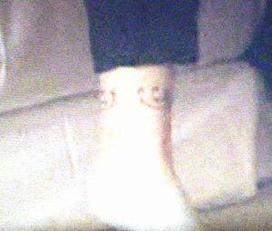月9福山雅治主演ドラマラヴソング1話藤原さくら(佐野さくら)がタトゥーの入った足首のシーンアップ3
