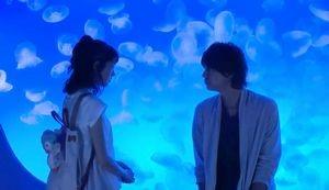 好きな人がいること新江の島水族館