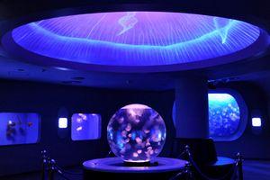 月9ドラマ好きな人がいることのロケ地-新江ノ島水族館