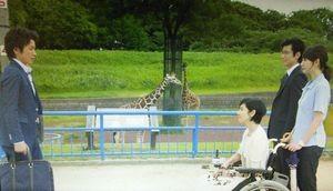 ドラマそして誰もいなくなった第2話ロケ地でガキの使いの電話で03番号の上原動物園4