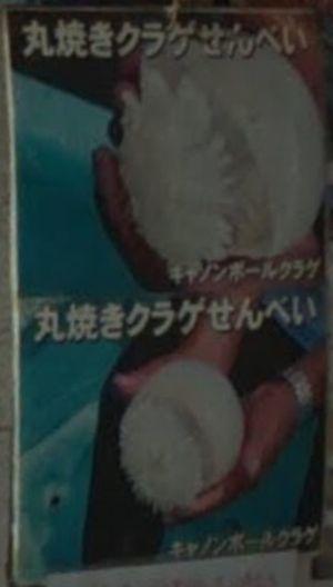 好きな人がいること3話ロケ地江ノ島デートのたこせんべいのお店の丸焼きクラゲせんべい。キャノンボールクラゲ