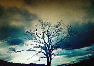 カインとアベルの、雲が早く流れていくオープニングシーン