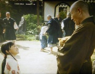おんな城主直虎で龍潭寺の南渓和尚(なんけいおしょう)が抱っこしていた猫の値段(相場)は?