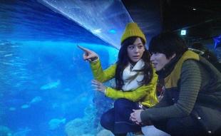 突然ですが明日結婚しますロケ地元彼「こうちゃん」とデート新江ノ島水族館4