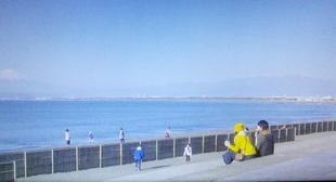 突然ですが明日結婚しますロケ地元彼「こうちゃん」とデート新江ノ島水族館5